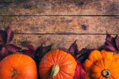 Herbstlebensmittelhintergrund mit Kürbisen und farbigen Blättern Lizenzfreies Stockfoto