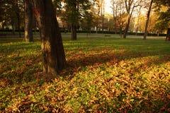 Herbstlich lizenzfreies stockfoto