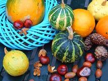 Herbstlich   lizenzfreie stockfotos