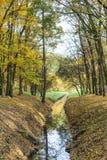Herbstlich im Park stockfotografie