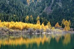 Herbstlich lakeshore lizenzfreie stockfotografie