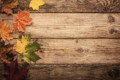 Herbstliche Ahornblätter auf dem Holztisch mit Filmfilter bewirken Hintergrund Lizenzfreies Stockbild