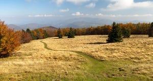 Herbstliche Ansicht vom Berg Strazov - Strazovske Vrchy Stockbild