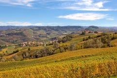 Herbstliche Ansicht von Weinbergen in Piemont, Italien Stockbild