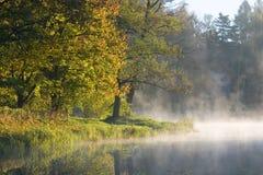 Herbstliche Bäume über ruhigem Wasser Lizenzfreie Stockfotos