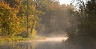 Herbstliche Bäume über See Lizenzfreies Stockfoto
