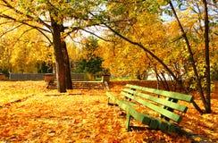 Herbstliche Bank lizenzfreies stockbild