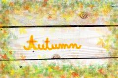 Herbstliche Blätter und Gräser lizenzfreie stockbilder