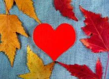 Herbstliche Blätter und Herz stockfoto