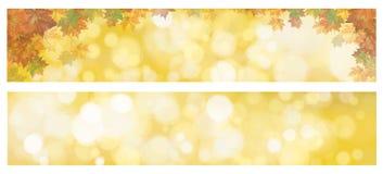 Herbstliche Blattfahnen des Vektors Lizenzfreies Stockbild