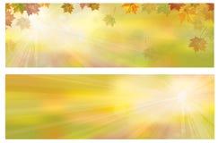 Herbstliche Blattfahnen des Vektors Stockfotografie