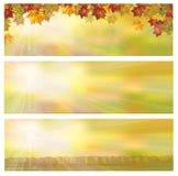 Herbstliche Fahnen des Vektors Lizenzfreie Stockfotos