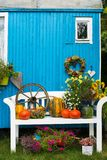 Colorful autumnal garden idyll with pumpkins. An different flowers on a garden bench royalty free stock image