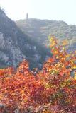Herbstliche Gebirgslandschaft Lizenzfreies Stockfoto