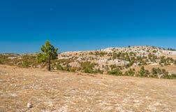 Herbstliche Landschaft auf Ai-Petri-Gebirgshochebene in der Krimhalbinsel Stockfotos