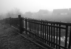 Herbstliche Melancholie Stockfotos