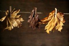 Herbstliche noch Lebensdauer Stockbilder