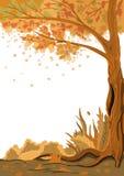 Herbstliche Stimmung und Schönheit Stockfotos