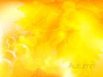 Herbstlicher Blatthintergrund, Vektorillustration Lizenzfreie Stockbilder