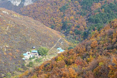Herbstlicher Gebirgswald Stockfotos