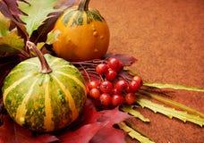 Herbstlicher Hintergrund Lizenzfreie Stockbilder