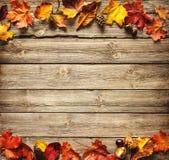 Herbstlicher Hintergrund der Danksagung lizenzfreie stockfotografie