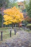 Herbstlicher melancholischer Tag Lizenzfreies Stockbild