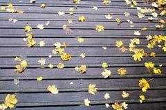 Herbstlicher melancholischer Tag Lizenzfreie Stockbilder