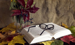 Herbstlicher Messwert Stockfotos