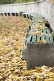 Herbstlicher Park Lizenzfreies Stockfoto