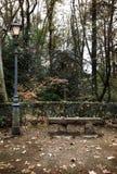 Herbstlicher Park Stockfotografie