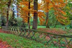 Herbstlicher Park in Italien Stockbild