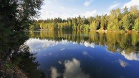 Herbstlicher See stock video