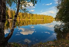 Herbstlicher See nahe dem Wald Lizenzfreies Stockbild