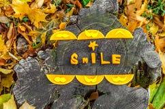 Herbstlicher Stimmungskürbis vektor abbildung