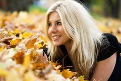 Herbstlicher Teppich Stockfoto