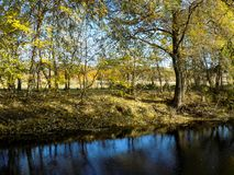 Herbstlicher Wald Lizenzfreies Stockfoto