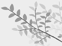 Herbstlicher Zweig Lizenzfreies Stockbild