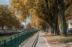 Herbstliches Aesculus hippocastanum im Grenzkanal Lizenzfreie Stockfotografie