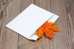 Herbstliches Ahornblatt im Umschlag Stockfotografie