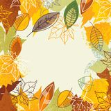 Herbstliches Feld Stockbilder