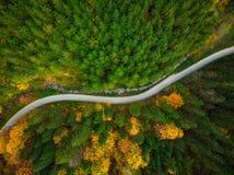 Herbstliches Laub im Waldland und in der kurvenreichen Straße, Brummenvogelperspektive lizenzfreies stockfoto