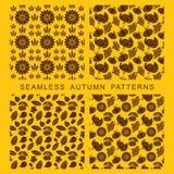 Herbstliches nahtloses Muster Blätter von Bäumen, von Truthahn, von Mais und von Kürbis lizenzfreie abbildung