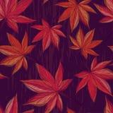 Herbstliches nahtloses Muster mit Ahornblättern auf dunklem Hintergrund Stockfotografie