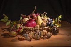 Herbstliches Stillleben 6 Lizenzfreies Stockfoto
