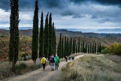Herbstliches Trekking in der Provinz von Siena, von Buonconvento zu lizenzfreie stockfotos