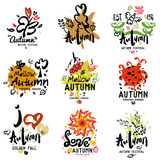 Herbstlogo, Illustration Stockfoto