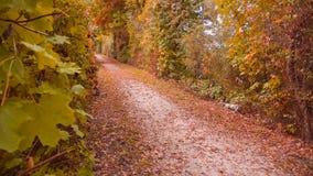 Herbstmethode Stockbild