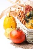 Herbstminikürbise Lizenzfreies Stockbild