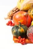 Herbstminikürbise Lizenzfreie Stockbilder